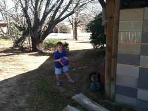 In Kay's backyard