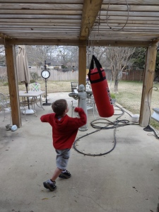 The Punching Bag of Love
