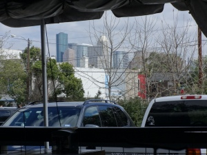 Our skyline view